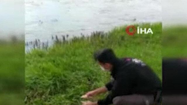 Van'da kaçak avlanan inci kefalleri polis memuru tarafından suya bırakıldı