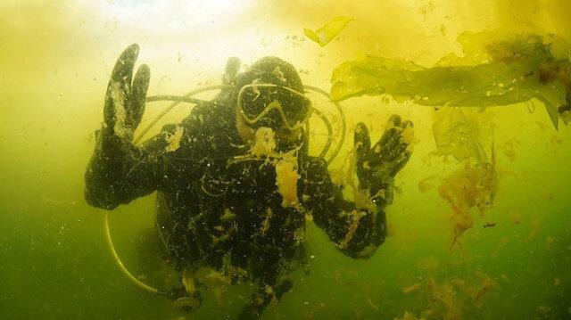 Marmara Denizi'ndeki salya su altında görüntülendi