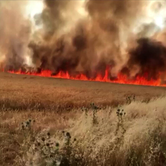 Adıyamanda dev yangın: Alevler bin 100 dönüm ekini kül etti