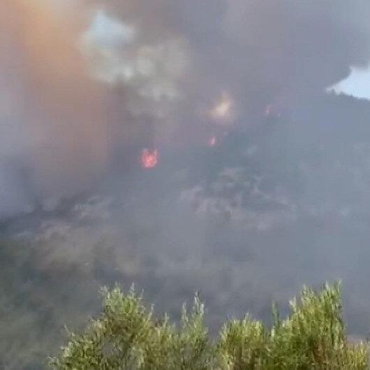 Milastaki orman yangınının başlama anı cep telefonu kamerasına yansıdı