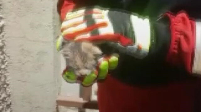 Baca içerisine düşen kedi yavrusu itfaiye ekiplerince kurtarıldı