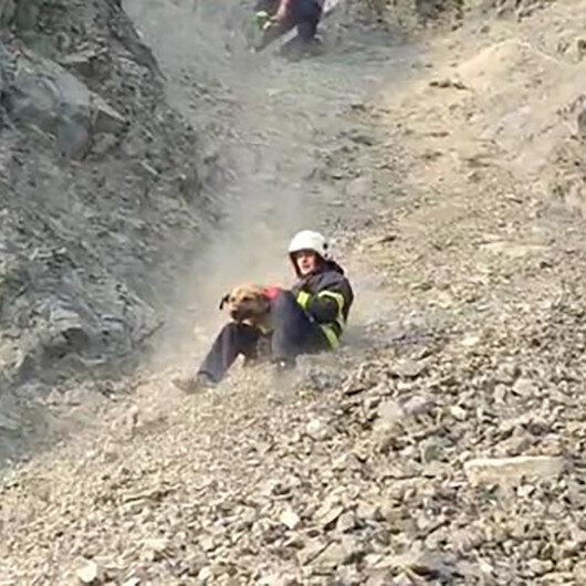 Kayalıklarda mahsur kalan köpeği itfaiye ekipleri kurtardı