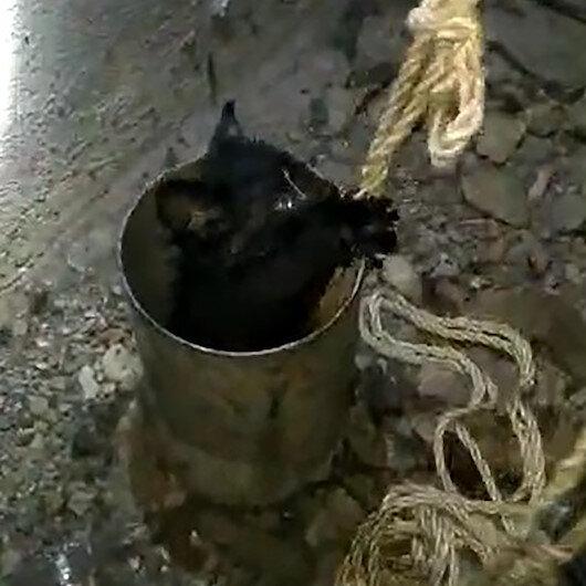 Havalandırma borusuna sıkışan yavru kedileri itfaiye kurtardı