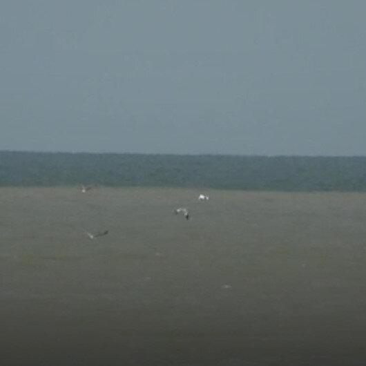 Samsunda etkili olan sağanak yağış sonrası Karadenizin rengi değişti