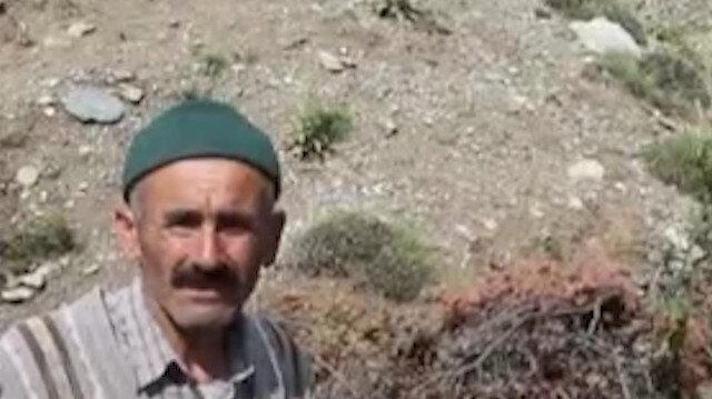 İki yılda 200 yabani meyveyi aşılayan Kastamonulu İsmail Eldek'e kaymakamdan teşekkür