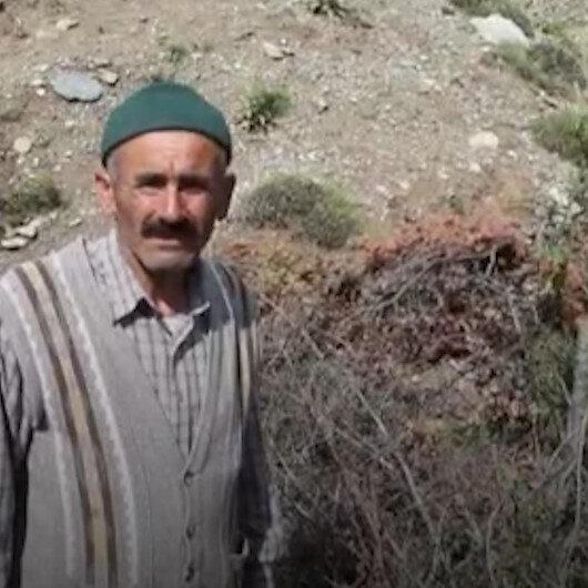 İki yılda 200 yabani meyveyi aşılayan Kastamonulu İsmail Eldeke kaymakamdan teşekkür