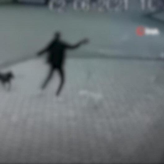 Bursa'da sahibinin tasmasız dolaştırdığı Pitbull cinsi köpek evcil köpeğe saldırdı