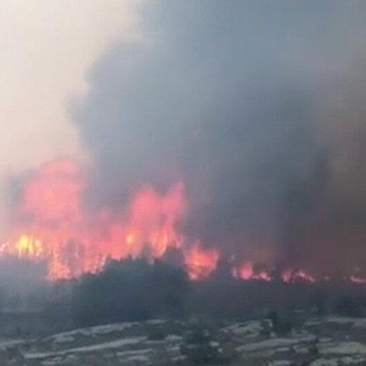 Norveçte arazi yangını: yaklaşık 500 kişi tahliye edildi