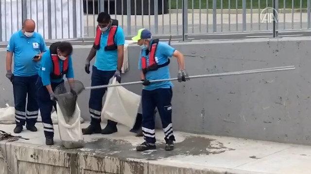 Kadıköy Belediyesi'nden müsilajla ilginç mücadele: Bir temizlik personeli ağ ile Kurbağalıdere'den deniz salyası topladı
