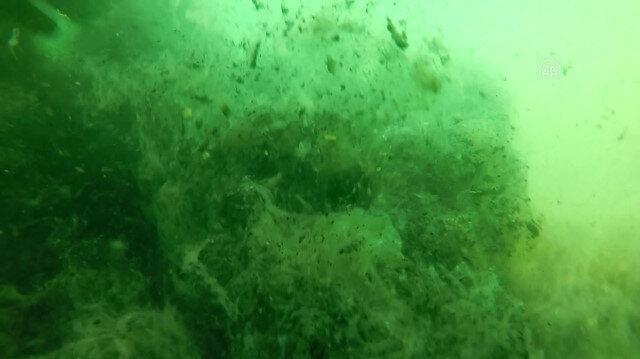 Marmara Denizi'ndeki 'deniz salyası' yoğunluğu görüntülendi