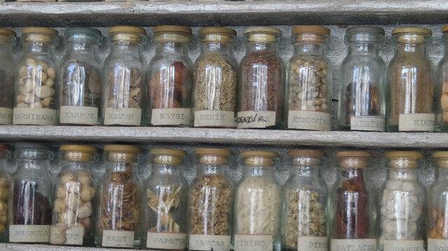 1976 yılından bu yana ata tohumu topluyor: 45 yıllık tohumların tekrar üretilmesini istiyor