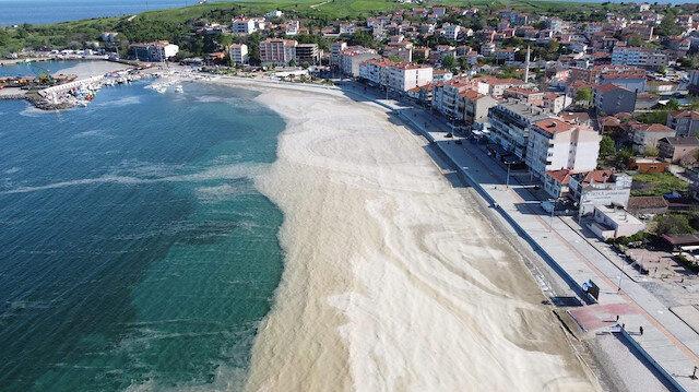 Uzmanından 'müsilaj' uyarısı: Marmara Denizi'nde yüzmek cilt hastalıklarına neden olur