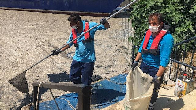 Bostancı'da müsilaj temizliği sürüyor