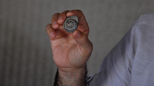 İslahiye'de 57 milyon yıl öncesine ait fosil bulundu: Deniz salyangozu olduğu iddia edildi