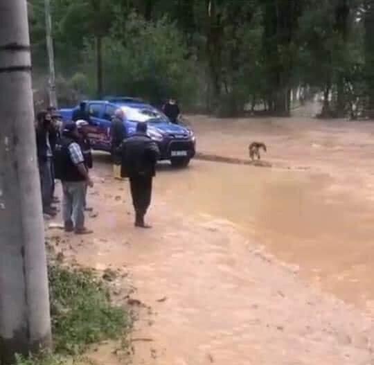 Yoğun yağış sebebiyle köy yolları, yerleşim yerleri ve tarım arazileri zarar gördü.