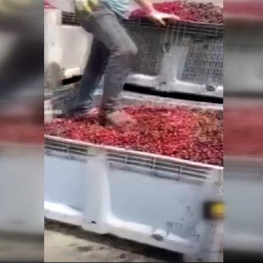 Afyonkarahisarda meyve suyu tesisi merkezinde mide bulandırıcı görüntüler