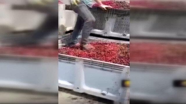 Afyonkarahisar'da meyve suyu tesisi merkezinde mide bulandırıcı görüntüler