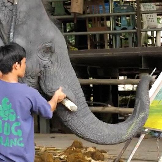 Taylandda bir filin yaptığı resim 5 bin 500 dolara satıldı