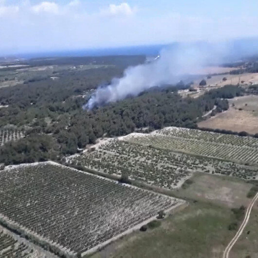 Bozcaadada orman yangını