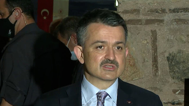 Bakan Pakdemirli: Marmara Denizi'ndeki balıkların yenilmesi ile ilgili bir problem yok