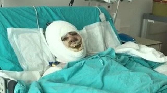 Mersin'de damat dehşeti: Kayınvalidesini benzinle yakıp izledi