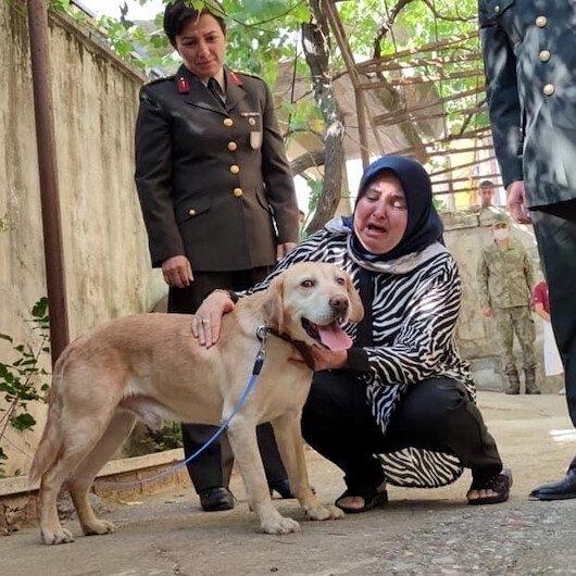 Şehit onbaşının gazi köpeği Atmaca ailesine sahiplendirildi: Sanki yavrumdan bir parça geldi
