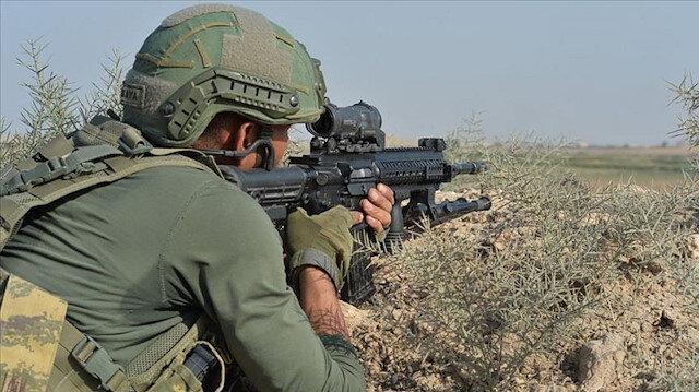 Pençe-Yıldırım operasyonunda 2 terörist etkisiz