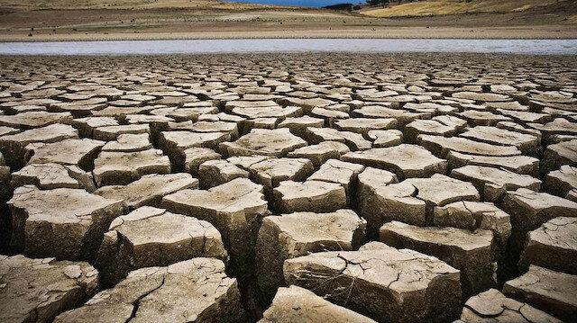 Son 20 yılın en kurak dönemi: Kanada'da tarımsal afet yaşanıyor