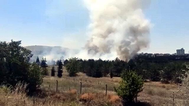 Ankara'da, Atatürk Orman Çiftliği arazisinde yangın