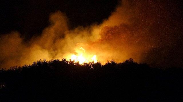 Bir orman yangını da Osmaniye'de çıktı: Alevler gecenin karanlığını kızıla boyadı