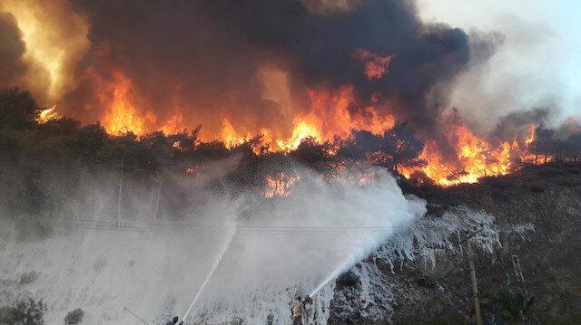 Türkiye'de yayın yapan yabancı basın PKK'nın orman katliamlarını haber yapmıyor