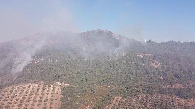 Osmaniye'deki orman yangınında ikinci gün: Havadan müdahale yeniden başladı