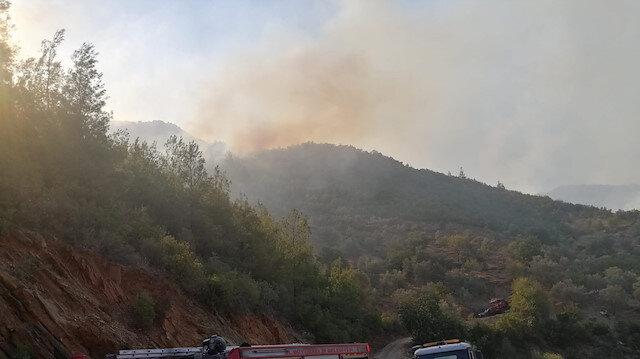 Orman yangınlarında terör ve kundaklama şüphesi