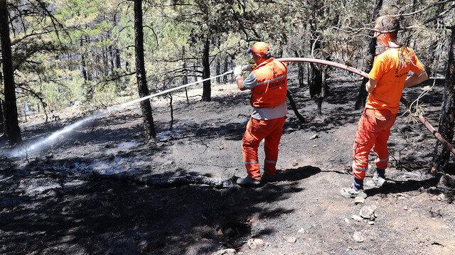 Üç ilden güzel haber geldi: Orman yangınları kontrol altına alındı