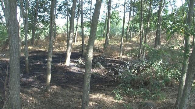 Orman yangınına köylülerin erken müdahalesi faciayı önledi