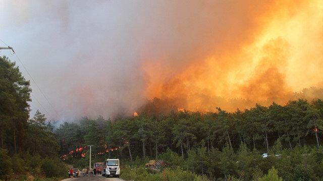 30 ilde ormanlık alanlara giriş çıkış yasaklandı