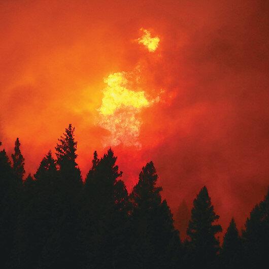 Dünya yanıyor