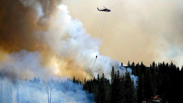 ABD'deki orman yangınları korkunç bilanço: New York Los Angeles ve Chicago'nun toplamı büyüklüğünde alan yandı