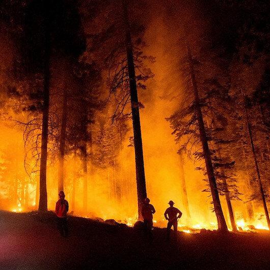 OGM duyurdu: Ülke genelindeki 163 yangından 152'si kontrol altında