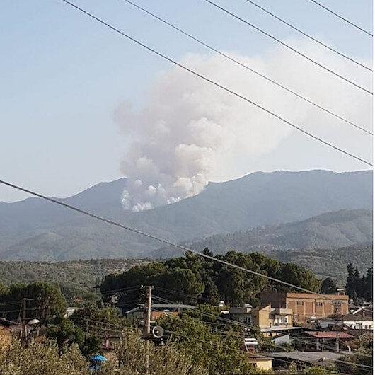 Bir orman yangını da Karacasu'da