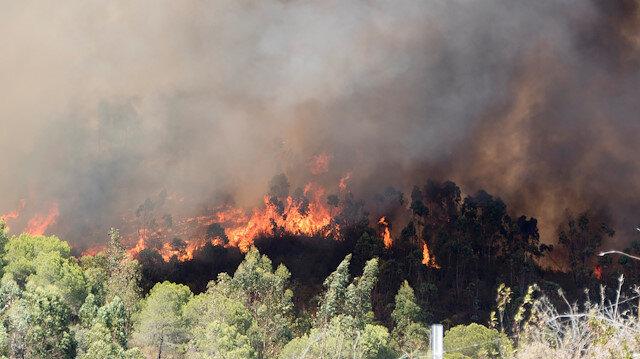 İspanya'da son iki yılın en büyük orman yangını sürüyor: Yerleşim yerleri tahliye edildi