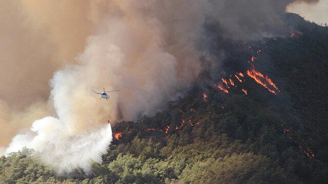 Muğla'daki yangınlarda 40 bin hektarlık alan yandı
