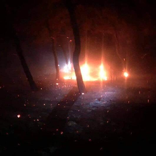 Çanakkale'de orman yangını: Muhtar 'sabotaj' dedi