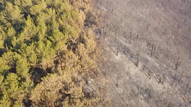 Antalya'nın Gazipaşa ilçesinde yanan alanlar havadan görüntülendi
