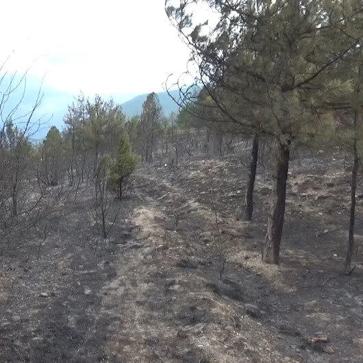 Karabük'te 13 saatte söndürülen orman yangınında 45 hektar alan yandı