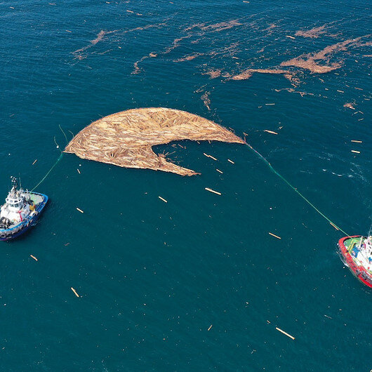 Selde denize sürüklenen tomruklar temizlenmeye başladı