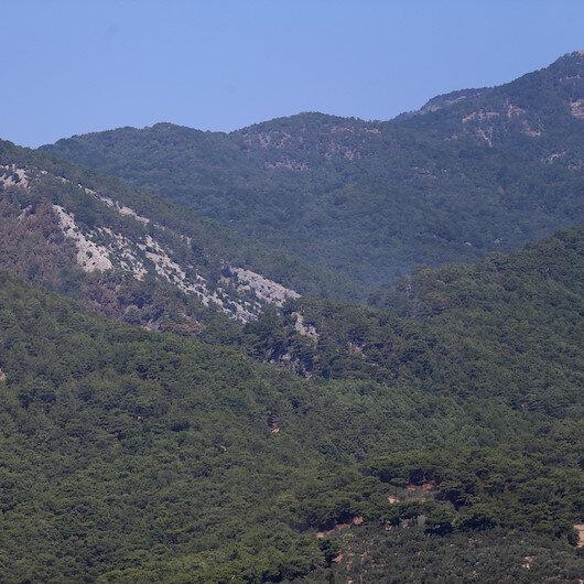 Orman Genel Müdürlüğü: Havadan ve karadan etkili müdahalelerimizle en kısa sürede yangını kontrol altına alacağız
