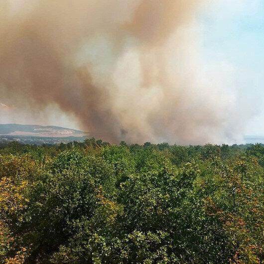 Gelibolu'da orman yangını: 20 dönüm alan zarar gördü
