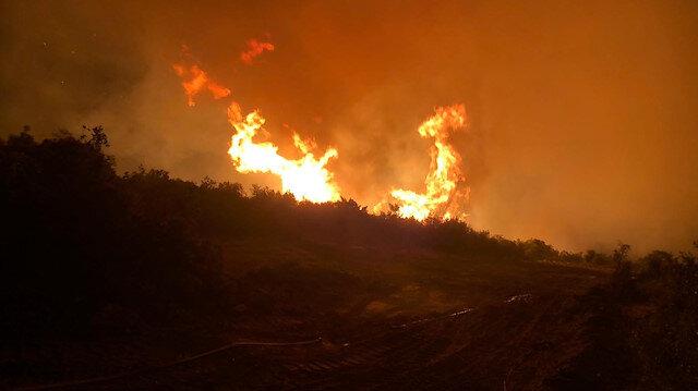 Manisa'daki orman yangını tamamen söndürüldü