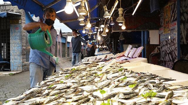 Yasak bitti tezgahlar şenlendi: Kilosu 15 liradan istavrit en çok talep gören balık oldu